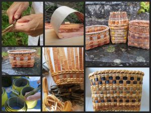 Bark basketry 2 day in May